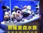 国贸大望路专业清洗鱼缸清洗水族箱水草造景珊瑚维护包活