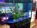 订做金鱼缸 缸 超白龙缸 海水缸 锦鲤 池