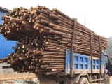 房山专用竹片电力木杆价格是多少