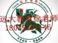电工,高就业率行业报名来北京远大教育