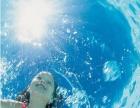 【张三丰游泳健身中心】游泳爱好者特别注意