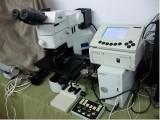 奥林巴斯二手BX61显微镜价格,BX61显微镜维修