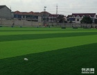 天津足球场施工 足球场地施工