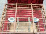出售手工制作的纯竹子的 鸟笼