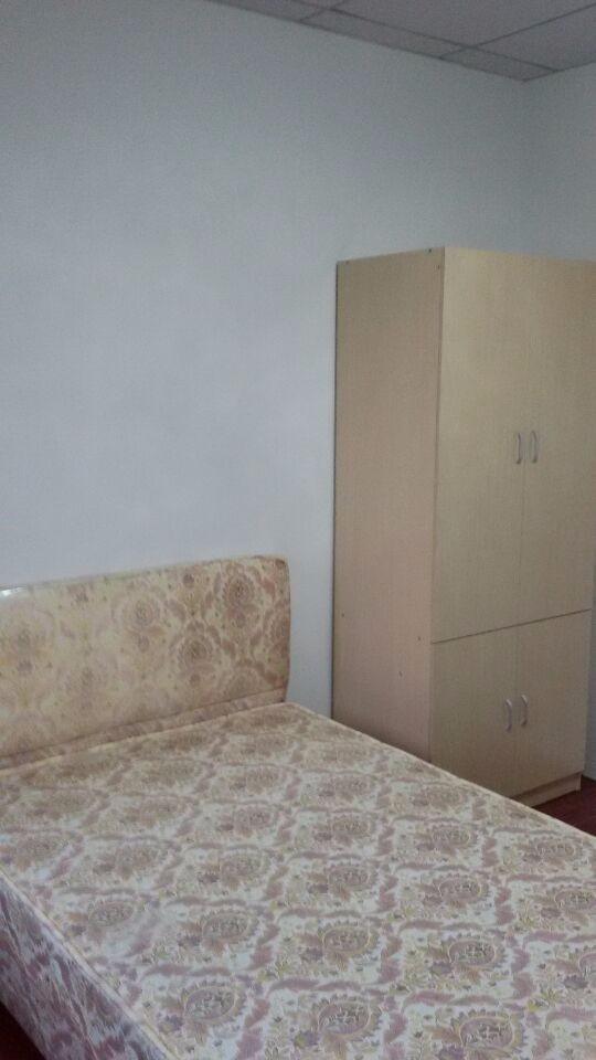 建设路 建设路 1室 1厅 30平米 整租