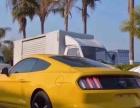 福特野马2015款 野马 2.3T 自动 性能版(进口) 性能跑