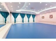 佛山明珠中国舞培训班,佛山小模特考级机构