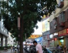 宝安石岩 美食街餐饮店转让(个人)