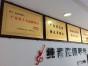 惠州学小提琴就选纯音琴行,专业老师一对一教学