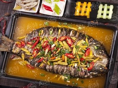 龙潮炭火烤鱼加盟诸葛烤鱼加盟烤鱼加盟费用