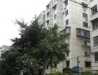 远洋路电视塔附近连福新村标准大2房真实图片仅租2500
