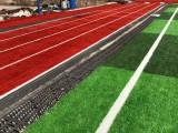常年承接体育工程项目施工