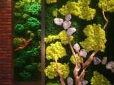 广州植物墙装修装饰
