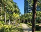 国际公馆独特V形建筑立面 特色空中花园 270景观视界