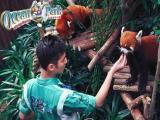鄂州出发香港澳门旅游四天三晚海洋公园黄大仙畅游港澳