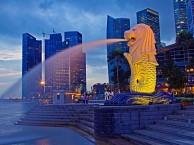 新加坡移民的条件