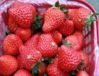 云台御香园草莓季来了哦,欢迎前来采摘