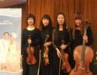 弦乐四重奏,小提琴,大提琴,