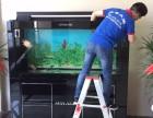 深圳哪里有专业鱼缸出租 鱼缸护理 鱼缸漏水维修 水草缸设计