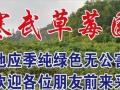 寒武草莓园——采摘园