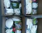 郑州年货春节蔬菜集装箱