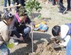 2016年3月12号幸福庄园植树拓展