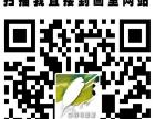 零基础电脑绘画设计班广州美术学院硕士主教