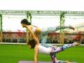 国内专业舞蹈培训-爵士拉丁肚皮瑜伽-舞蹈教练速成班