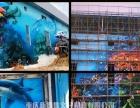 专业壁画墙体彩绘幼儿园墙绘酒店壁画工程绘画墙画