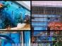 专业墙画工程壁画酒店主题彩绘幼儿园墙绘海洋馆手绘
