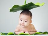 贯日漂亮宝贝,专业儿童摄影 孕味写真 亲子全家福系列