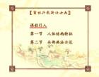 薛林兴教新仕女画绘画教学光盘精装版10DVD 教学光盘