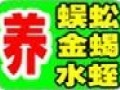 农科金源生态养殖加盟