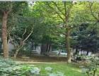碧海花园碧水云天中等装修3室出租。先到先得