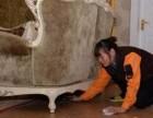 武汉蔡甸育婴师联系电话员工素质高 经过专业培训