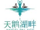 北京阜成门附近少儿芭蕾舞培训班-专注少儿芭蕾-天鹅湖畔