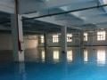 福永凤凰一楼2900平米厂房地段好招租