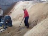 湖北逸村小型香菇木屑粉碎机厂家 食用菌木材粉碎机价格