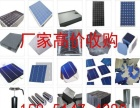 高价采购太阳能多晶电池片单晶硅片及光伏组件