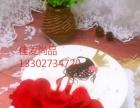 汕头生日蛋糕汕头预订蛋糕专业蛋糕预订市区免费派送