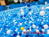 浙江宁波双利海洋球吹塑机生产厂家