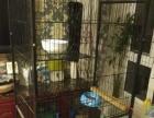 出售可爱多层猫笼子