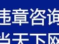 枣庄超速 鲁D委托 超速一次性12 专业咨询咨询当天下