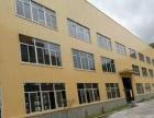 瑞安飞云工业区 5000平方标准厂房 适合各行业