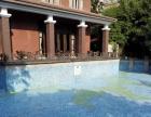 蓝光格兰星河湾游泳池招商加盟 娱乐场所