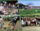 东莞松湖生态园农家乐野炊休闲团队拓展家庭聚会旅游圣地一日游