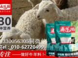 羔羊提早断奶的好处小羊饲料