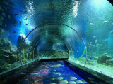 2020榆次海立方海洋公園有什么玩的 可以玩水嗎