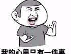 出国留学必备的当地语言!淄川山木培训完成您的出国梦