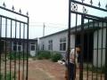 出租厂房 带小院 塑钢 600平